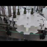 Máquina automática de llenado de aceite de oliva estándar de venta caliente ce
